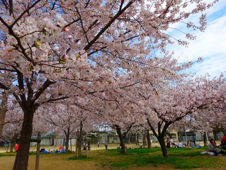 三ノ瀬公園